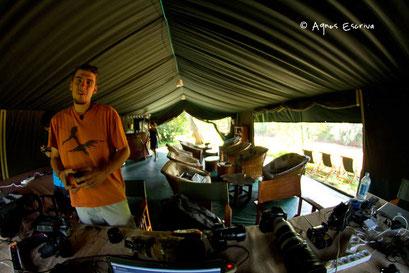 Camp de MPS - Masaï Mara, Kenya, décembre 2011