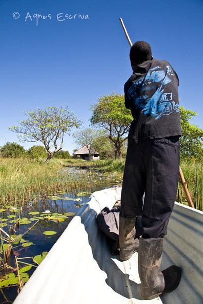 Marais de Bangweulu - Zambie mai 2009