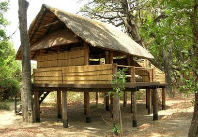 Camp de Chamilandu - South Luangwa - Zambie nov 2005