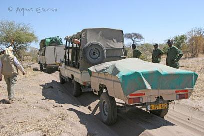 Ensablement - Botswana août 2007