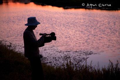 Mother au crépuscule -Timbavati  - Afrique du Sud, juin 2011