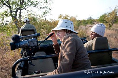 Timbavati  - Afrique du Sud, mai 2010