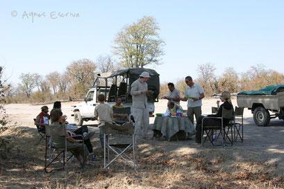 Pique-nique - Botswana août 2007