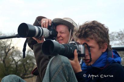 Sabi Sand - Afrique du Sud août 2006