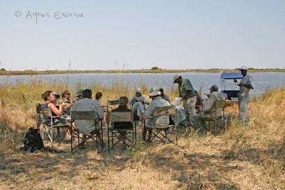 Pique-nique et ballade en bateau dans le delta de l'Okavango - Botswana août 2007