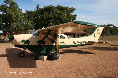 Vol Bangweulu - South Luangwa - Zambie mai 2006