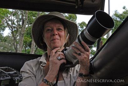 Dans le 4x4 - Masaï Mara, février 2007