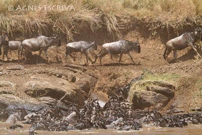 L'entonnoir - Kenya août 2010