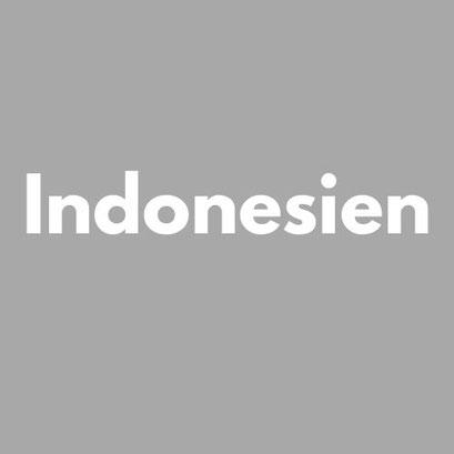 INDONESIEN Reiseliteratur