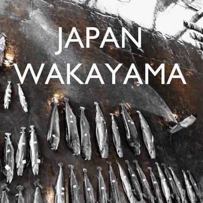 Reisebericht Japan Wakayama Reiseblog Edeltrips