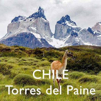 Reisebericht Chile Torres del Paine Reiseblog Edeltrips