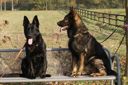 Fine 2011 und ihr Bruder Grimm