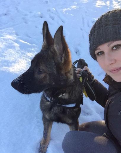 Castle und Irina im Schnee