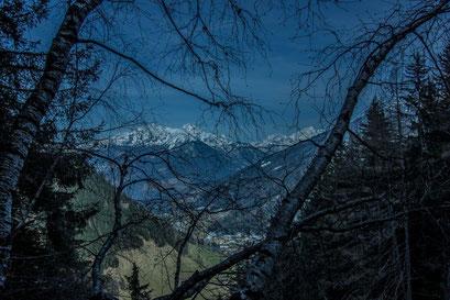 Blick durch den keimenden Baum auf das Bergdorf Weißenbach im Ahrntal in Südtirol