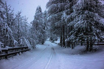 verschneite Weißenbacher Winterlandschaft