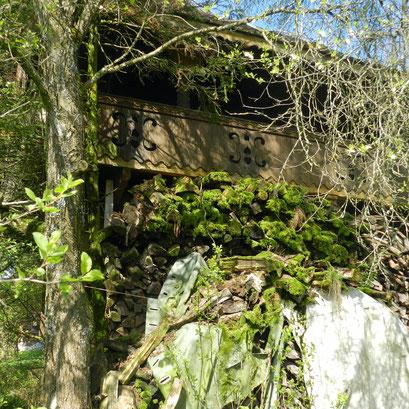 Bäume. Sträucher und Holzbeigen verbergen das Kleinod