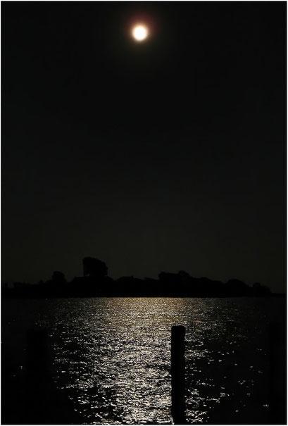 Bodden im Mondlicht