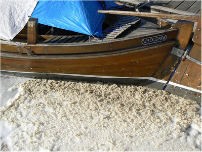 Zeesboote in Wustrow, Fischland-Darß