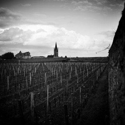 Saint-Émilion & vignes. Aquitaine, France 2013