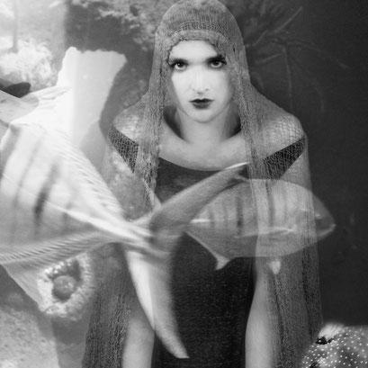 """""""Auf der Jagd nach dem Perlenfisch"""" © Marc Groneberg"""