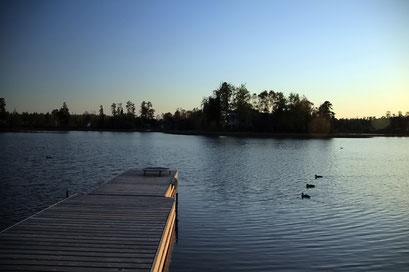 Friedlicher Blick auf den See, Ontario