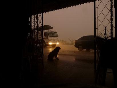 Der Regen bringt nicht die erhoffte Abkühlung