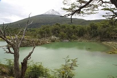 Tierra del Fuego N.P.