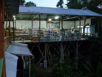 Super Markt in Drake Bay - offen für Selbstbedienung für die Affen?