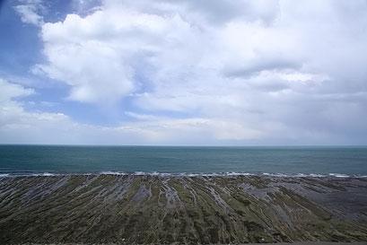 Peninsula Valdes N.P. - Ganz klein wären die Seeelefanten zu sehen