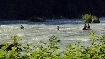 Fischers Fritz fischt frischen Lachs.... Haines, Alaska