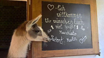 Valentin uns seine Freunde begrüßen unsere Gäste recht herzlich.