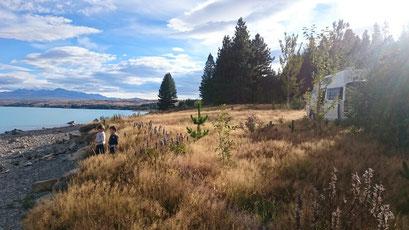 Nouvelle-Zélande, camping sauvage