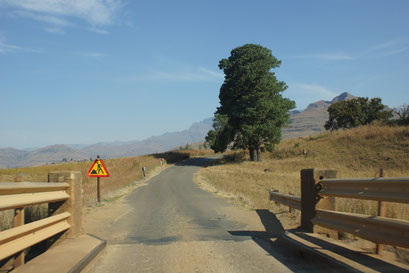 27.05.2014 Fahrt zu den Drakensbergen