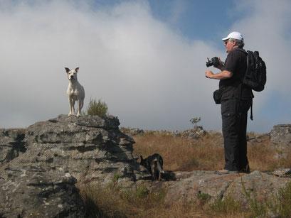 19.05.2014 Kaapschehoop Nature Walk