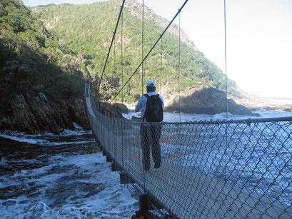 02.06.2014 Storms River Mouth. Abendliche Wanderung zur Hängebrücke