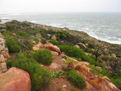 04.06.2014 Weiterfahrt im Regen Richtung Kap