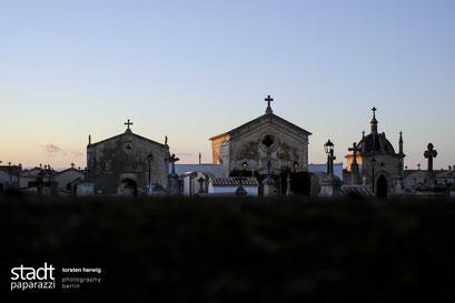 Petra Cemetery (Mallorca), 2019