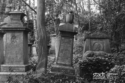 Highfield Cemetery London (UK), 2018