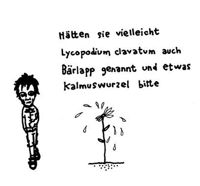 kalmus, arbeitsbegleitende gedankenskizze, copyright chantal labinski 2013