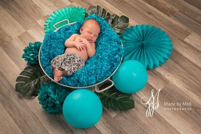 Séance photo nouveau-né toulouse, photographe bébé toulouse, photo bébé jungle