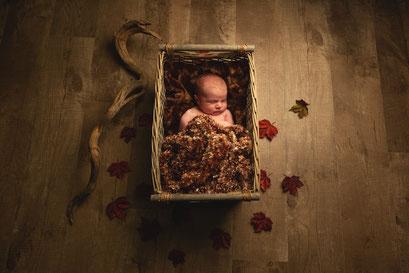 Séance photo nouveau-né toulouse, photographe bébé toulouse, photo bébé automne