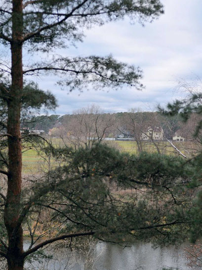Вид из усадебного парка