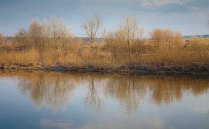 Москва-река в районе Николиной Горы