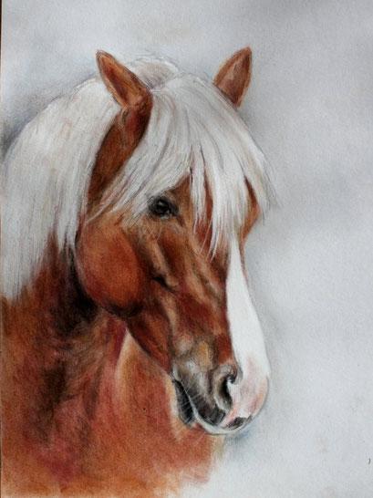 Zeichnung, Pony