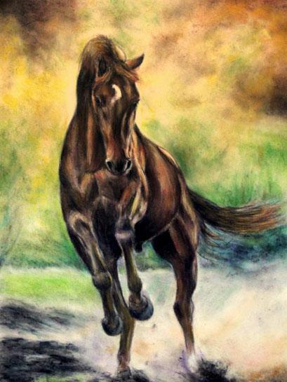 Pferd Bewegungsstudie