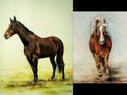 Warmblüter-und Isländerportrait, Pastell