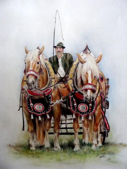 Pferdeportraits, Kaltblutgespann, Pastelkreide mit Buntstift