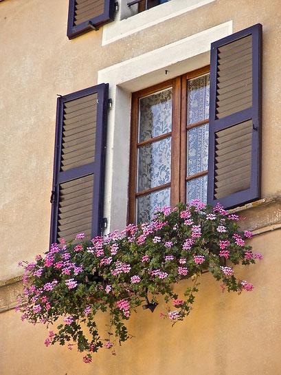 flowers, balcony, window, Pienza, Val d'Orcia, Siena, Italy, Toscana, Tuscany