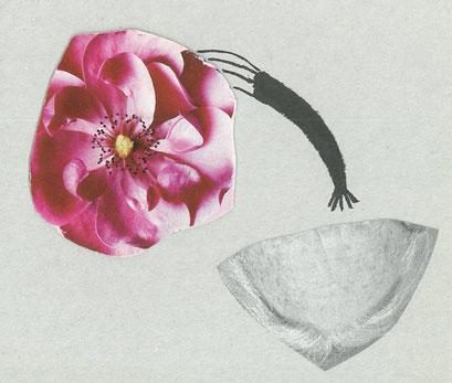 Fantasie pflanzen