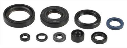 ATHENA oil seal kit :  7,500円  (P400485400046)